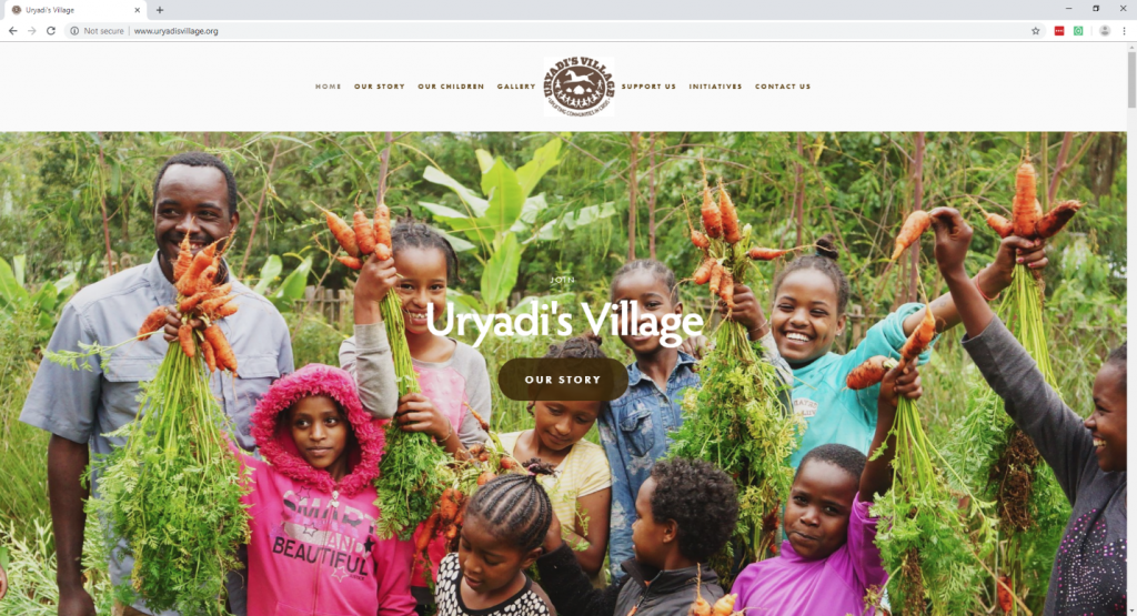 The Most Effective Non-profit Website Design-fig 10