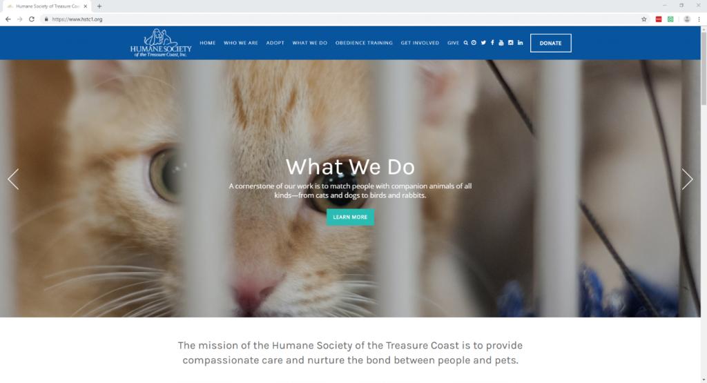 The Most Effective Non-profit Website Design-fig 9