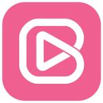 Brandzooka-logo