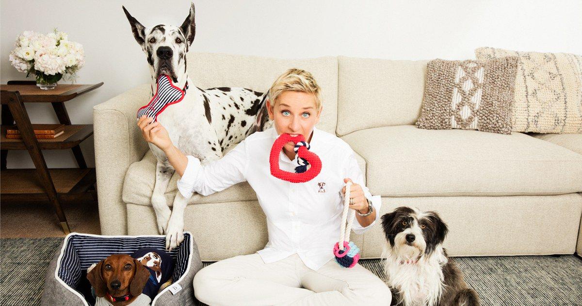 ED Ellen DeGeneres furniture brand