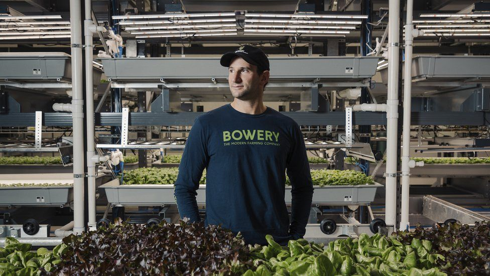 Startup founder in farming space